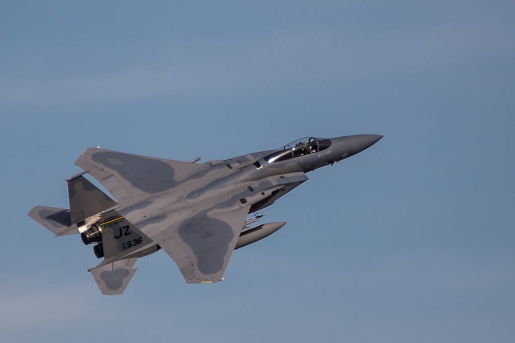 "Louisiana ANG F15 -- The ""Bayou Militia"""