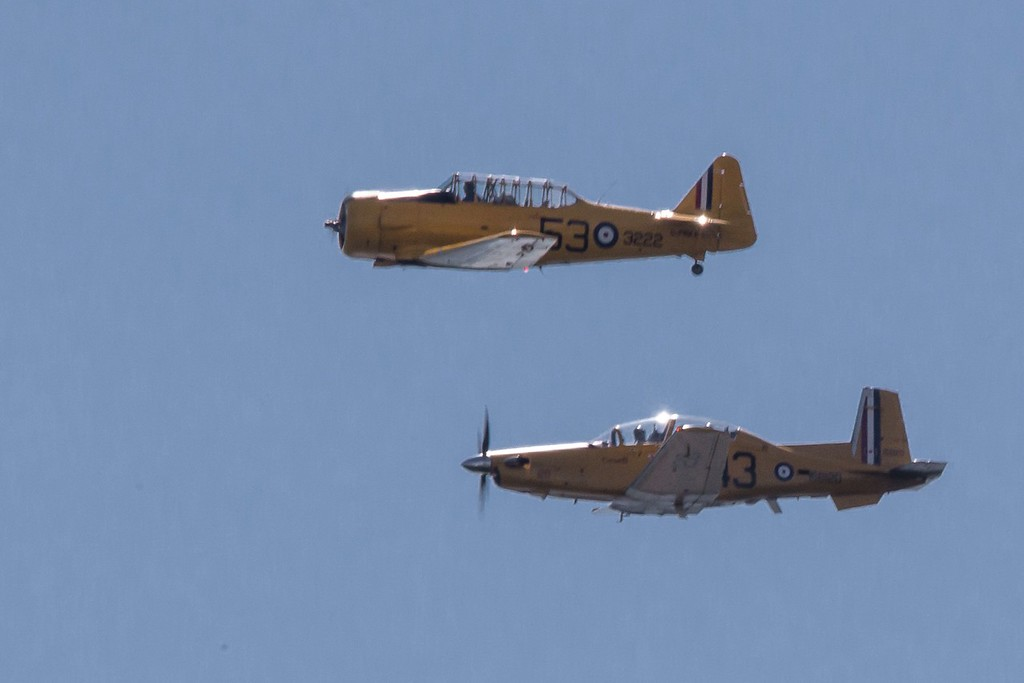 Harvard and Harvard II in Formation
