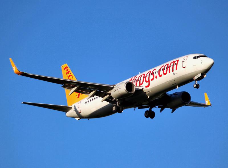 Pegasus 737-800, TC-CPD.<br /> By Graham Miller.