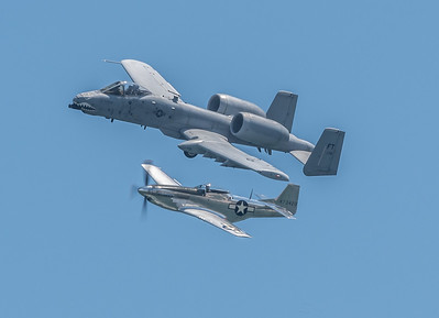 A-10 Warthog and the P-51 Mustang