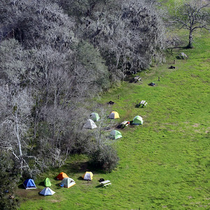 A group of campers in Brazos Bend State Park