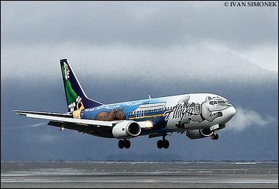 """NEW DESIGN 2"",Alaska airlines Boeing 737 landing at Wrangell,Alaska,USA."