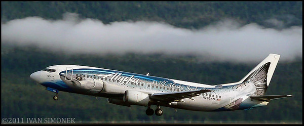 """A FLYING SALMON"",Alaska Airlines Boeing 737,Wrangell,Alaska,USA."