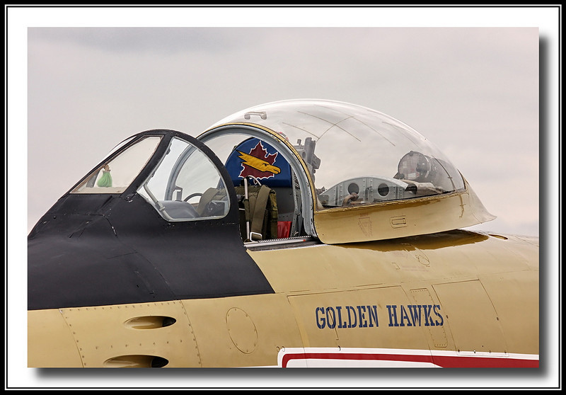 Detail shot of the Golden Hawk - see head rest.