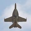 US Navy F/A-18F Super Hornet (aka Rhino)