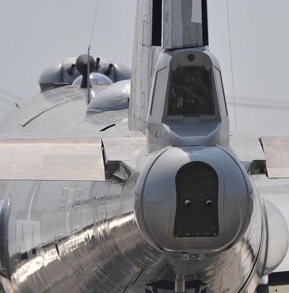 FiFi Tail view forward