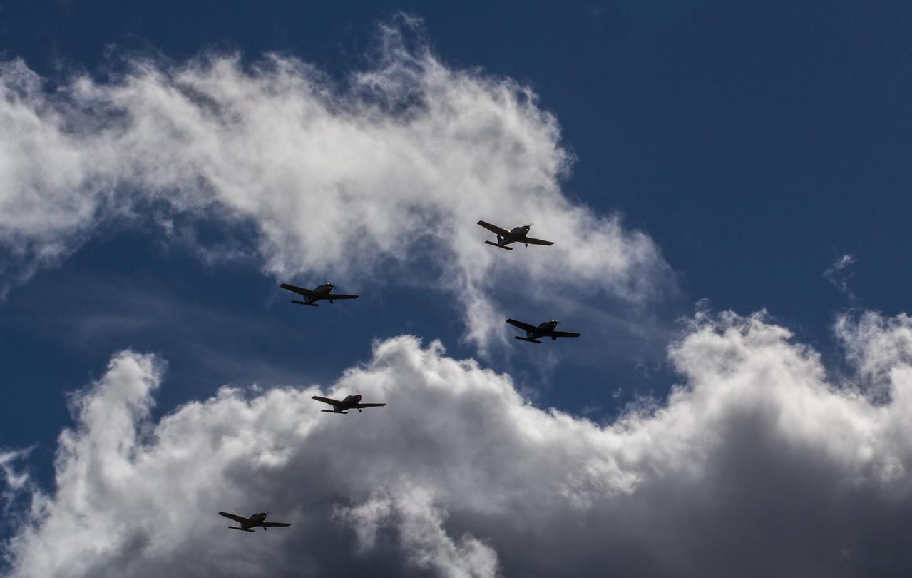 www.skybirds.se/