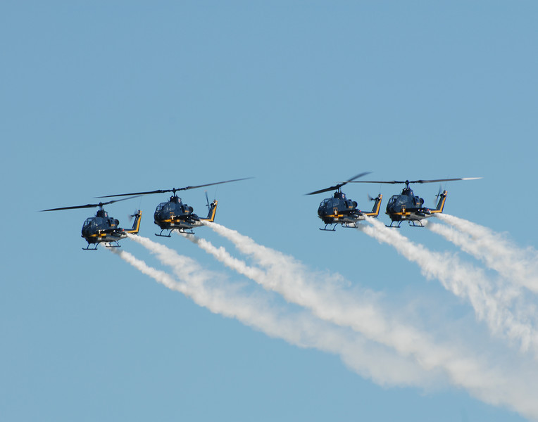 US Army Sky Soldiers