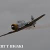 SNJ-5 War Dog flown by John Collver