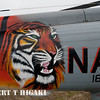 Nice paint job on this helicopter.