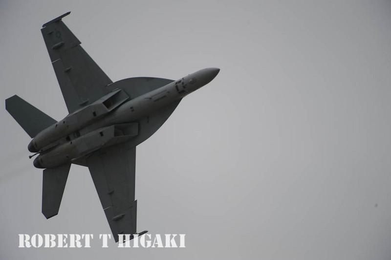 F-18F Hornet