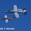 P-51 Mustang with A-10 Warthog