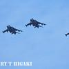 AV-8B Harriers