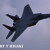F-15 Eagle. This was actually a very hard shot because the plane almost flew over me at a high speed.
