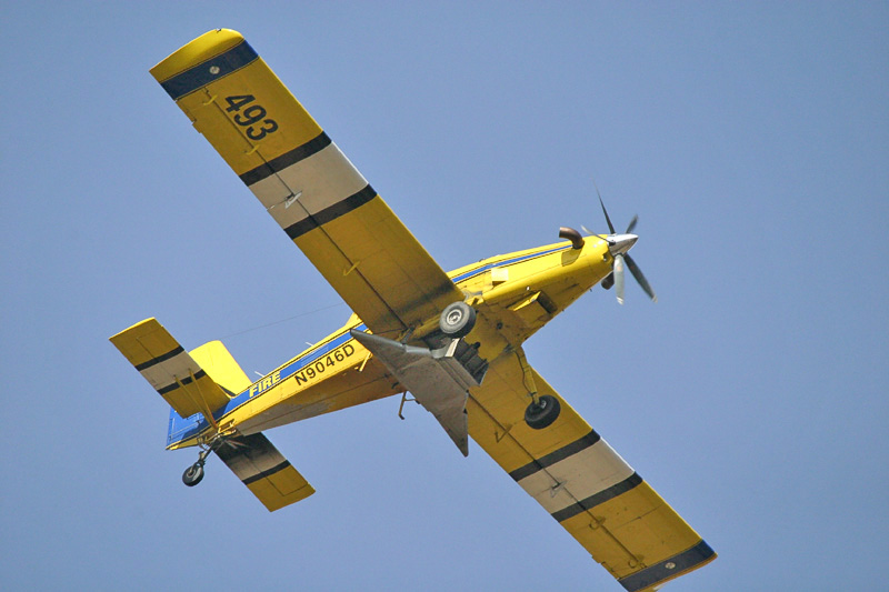 Taken with my Bigma Lens.