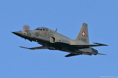 J-3025 F-5E Swiss Air Force @ Axalp Switzerland 12Oct05 - Firing with the 20mm nose cannon