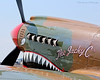 P-40 Warhawk nose art.