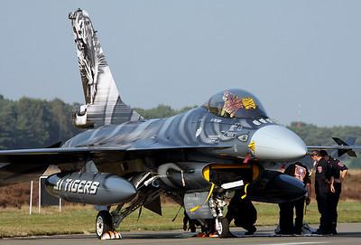 Belgian Tiger Viper.