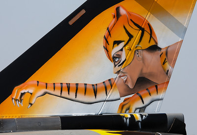 Tiger Woman of the French Rafale
