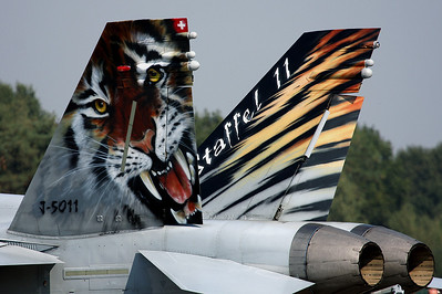 Very nice tail of Swiss Tiger Hornet.