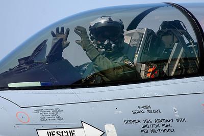 Norwegian Viper pilot is in Tiger mood.