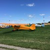 It was the 80th anniversary celebration of the Piper Cub.