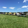 Multiple rows of Cessna 195's.