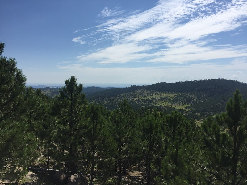 We continued driving up and around the scenic route to Mt. Rushmore.