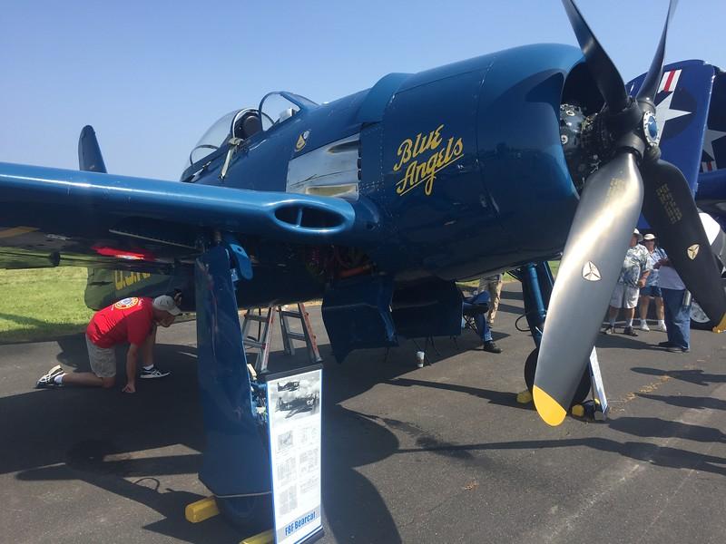 Bearcat in Blue Angels colors.