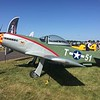 We walked over to the new Homebuilt area and saw this T-51 replica.