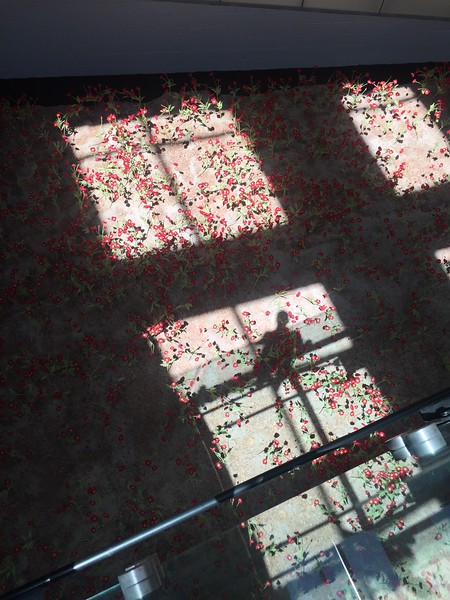 We headed back down to the main museum which had these fields of poppies under the walkway in to the main museum. There are over 9000 poppies, each representing 1000 lives lost during the war.