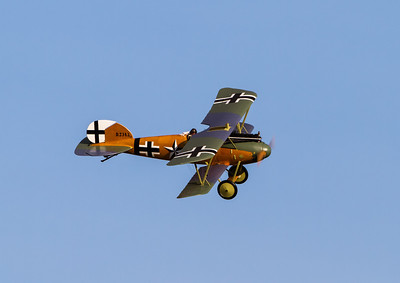 Albatros DVa - The Vintage Aviator reproduction.