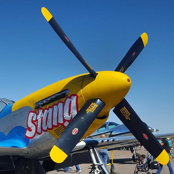 P-51 Mustang (2)