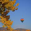 DJRI_copyright_2011-10-16@07-59-54