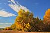 DJRI_copyright_2011-10-16@07-57-11