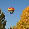 DJRI_copyright_2011-10-16@08-08-35