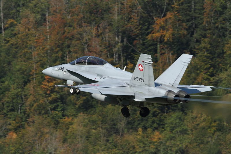Swiss F/A-18D Hornet