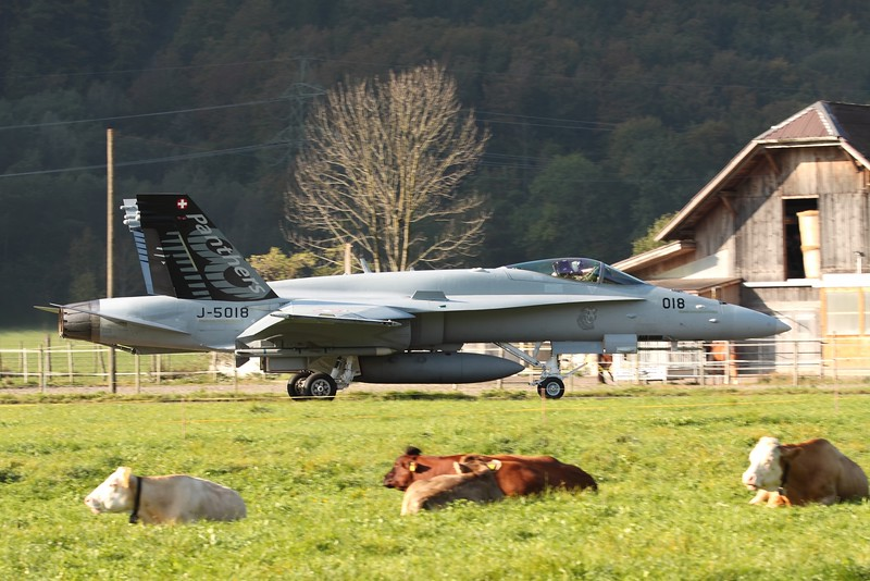 Swiss F/A-18C Hornet and milkproducers
