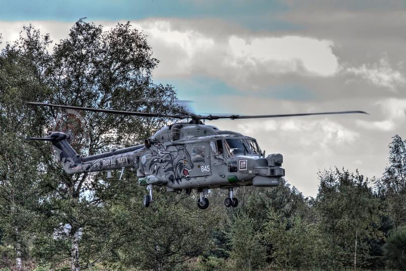 Navy Lynx at Sanicole 2011