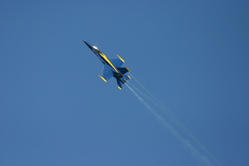 Blue AngelsShow2010From_Water (410)