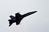 Blue Angels-2010-5574 1