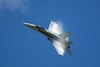 Boeing FA-18EF Super Hornet - Wings over Waukegan - Waukegan, Illinois - Photo Taken: September 8, 2012