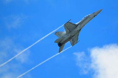 Boeing FA-18EF Super Hornet - Rockford Airfest - Rockford, Illinois - Photo Taken: July 31, 2010