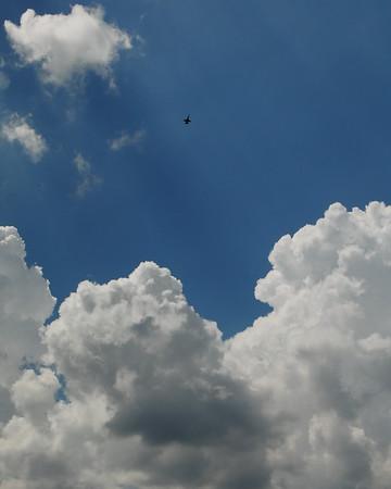 Boeing FA-18EF Super Hornet - Gary Air Show - Gary, Indiana - Photo Taken: July 10, 2010