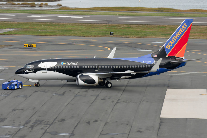 Shamu is a special pantscheme for Southwest, where an entire 737 is painted to resemble Shamu, the orca mascot of Sea World.