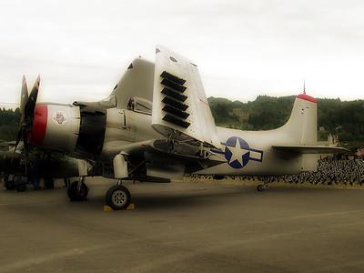 Cascade Warbirds 7 (46781477)