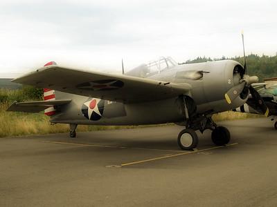 Cascade Warbirds 5 (46781475)