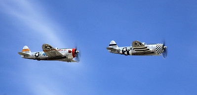 Two bubble-top P-47Ds fly past the crowd at the 2014 Planes of Fame airshow in Chino, CA.