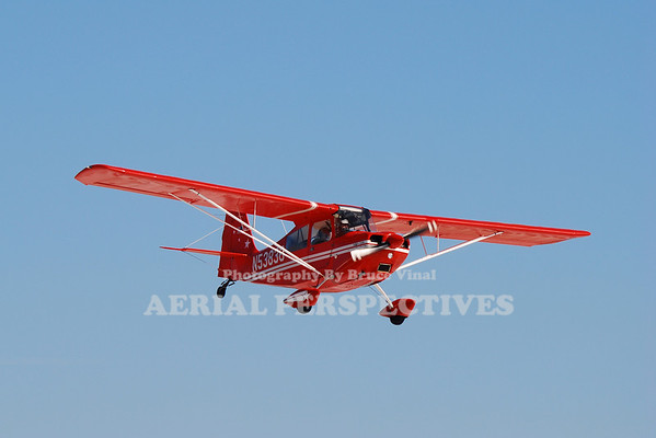 N53836 - 1975 Bellanca 7ECA