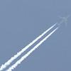 Alaska Airline ASA296 SEA-MMUN B737-800
